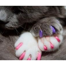 Антицарапки Колпачки для кошек на когти, 40шт