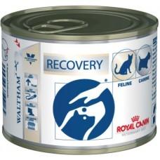 Royal Canin RECOVERY CANINE / FELINE Влажный корм для собак и кошек в период анорексии, выздоровления, 195гр, паштет