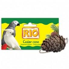 """RIO Лакомство-игрушка """"Кедровая шишка"""" для птиц, 1 шт. (49444)"""