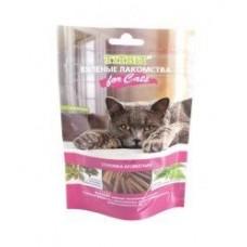 TITBIT Вяленые лакомства для кошек Соломка ароматная 40г (5149)