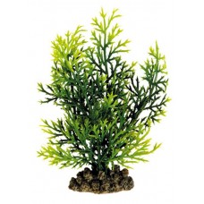 Искусственное растение, 13см, пластик, блистер (5610036)