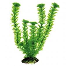 Искусственное растение, 30см, пластик, блистер (5602048)