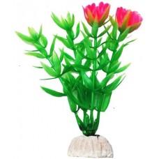 Уют ВК101 Растение Гетерантера зеленая с розовыми цветами 10см (C42808)