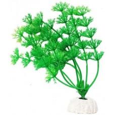 Уют ВК103 Растение Амбулия зеленая 10см (C42792)