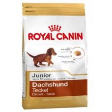 Royal Canin DACHSHUND JUNIOR 30 для щенков Таксы до 10мес., 1.5кг (P11713)