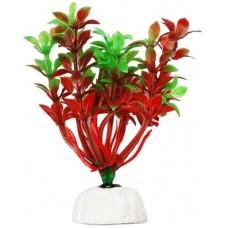 Уют ВК108 Растение Гемиантус красно-зеленый 10см (C42805)