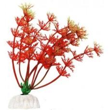 Уют ВК111 Растение Амбулия красная 10см (C42793)