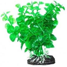 Уют ВК203 Растение Бакопа зеленая 11см (C42799)