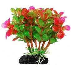 Уют ВК210 Растение Бакопа зелено-розовая 11см (C42801)