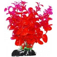 Уют ВК212 Растение Бакопа оранжево-фиолетовая 11см (C42802)