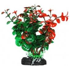 Уют ВК213 Растение Бакопа зелено-оранжевая 11см (C42800)