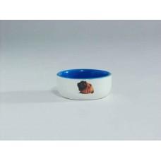 Beeztees Миска керамическая с изображением морской свинки, 160мл*10см
