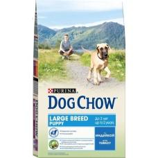 Dog Chow сухой корм для щенков крупных пород (Puppy-Junior Large Breed)
