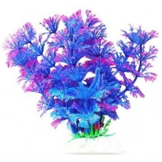 Уют ВК214 Растение Амбулия сине-фиолетовая 11см (C42796)