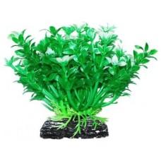 Уют ВК217 Растение Микрантемум зелено-белый 11см (C42814)