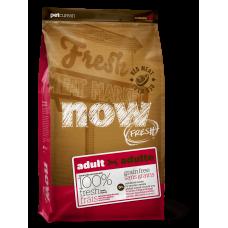NOW FRESH Беззерновой для Взрослых собак со свежим мясом Ягненка (Grain Free Red Meat Adult Recipe) 24/16