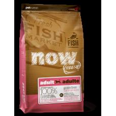 NOW FRESH Беззерновой для Взрослых собак с Форелью и Лососем для чувствительного пищеварения (Grain Free Fish Adult Recipe) 24/14